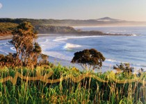 Gorgeous beaches and lookouts at peaceful Minnie Water