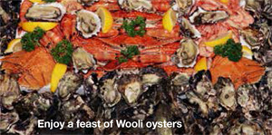 Fresh, succulent Wooli oysters from the pristine Wooli Wooli River, Northern NSW