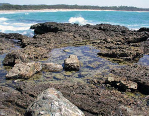 Rock pools at Minnie Water and Diggers Camp