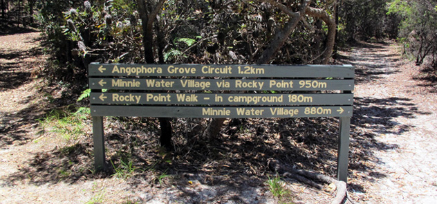Signpost for short walks at Minnie Water, Yuraygir National Park