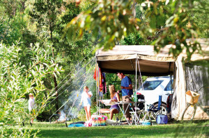 Beachfront camping at Illaroo campground, Yuraygir National Park, near Minnie Water