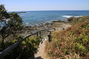 Wilsons Headland walking track in Yuraygir National Park near Wooli and Minnie Water
