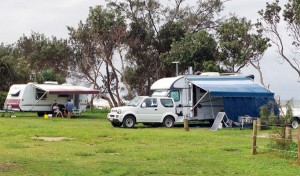 Free camping at Illaroo campgroun in Yuraygir National Park if you become a Nature Nomads volunteer
