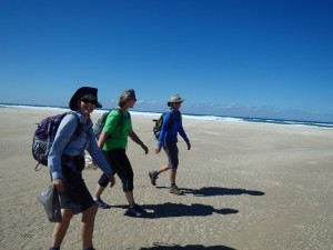 Walking the 4-day coastal walk with Yuraygir Walking Experiences