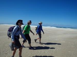 Walking the 4-day coastal walk with Yuraygir Walking Experiences